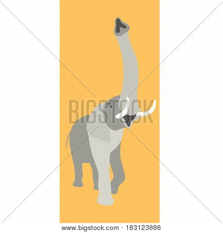 elephant vector illustration style Flat front side