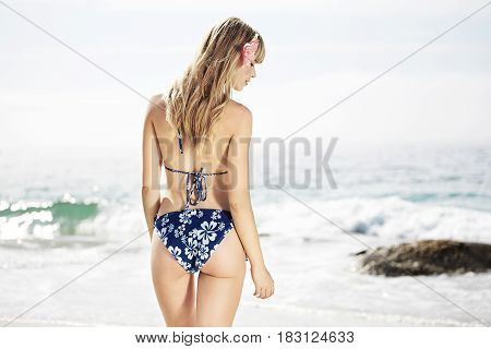 Bikini babe on beach rear view with ocean background