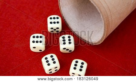 six dice with cup on red background