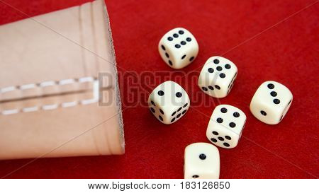 six dice and cup on red background