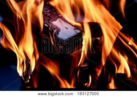 Closeup image of fire and burning firewood