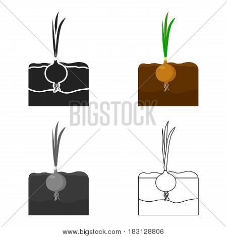 Onion icon cartoon. Single plant icon from the big farm, garden, agriculture cartoon.