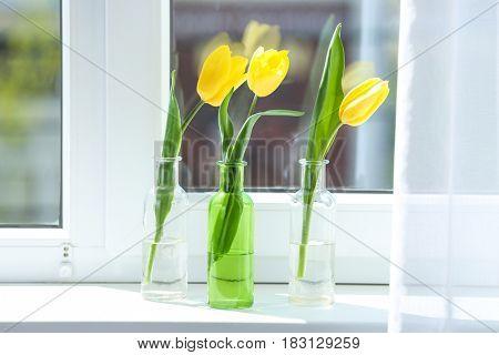 Glass vases with beautiful tulips on windowsill