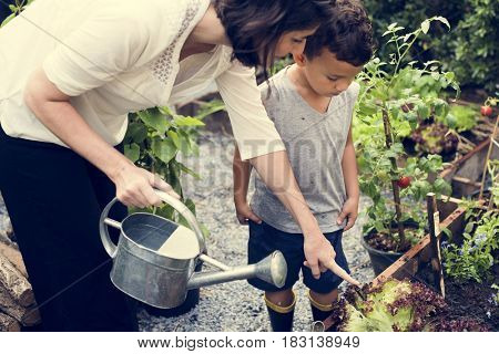 Child in the garden watering the plants