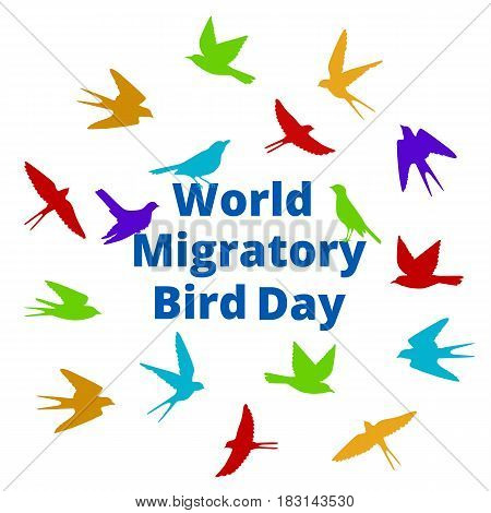 World Migratory bird day. Background with colorful birds