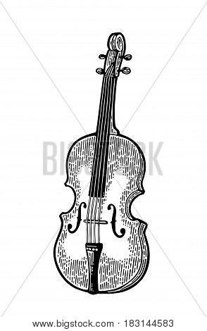 Violin. Vector vintage black engraving illustration for poster, web. Isolated on white background.