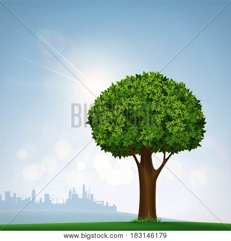 Green tree with leaves. Nature on the background of the urban landscape. Stock vector illustration.