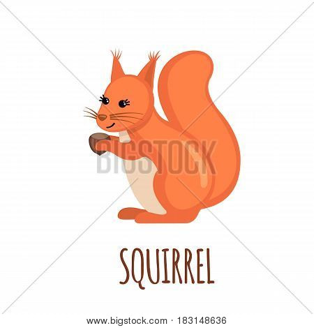 Cute Squirrel in flat style isolated on white background. Vector illustration. Forest animal. Cartoon Squirrel.