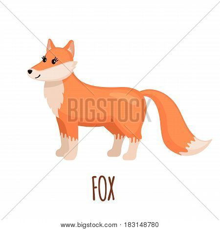Cute Fox in flat style isolated on white background. Vector illustration. Forest animal. Cartoon fox.