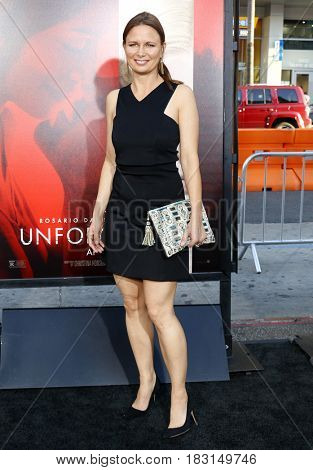 Mary Lynn Rajskub at the Los Angeles premiere of 'Unforgettable' held at the TCL Chinese Theatre in Hollywood, USA on April 18, 2017.