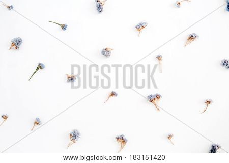 Floral pattern made of blue dried flowers on white background. Flat lay top view. Floral pattern.