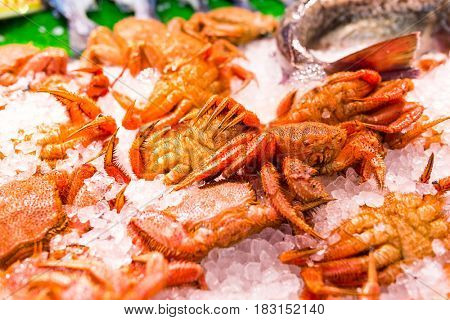 Crab in iced at wet market