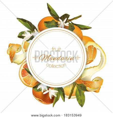 Vector mandarin round banner on white background. Design for sweets and pastries filled with citrus fruit, dessert menu, natural cosmetics, health care products. With place for text