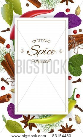 Vector spice vertical banner with various seasonings on white background. Red chili peppers, bay leaves, cinnamon and other spices. Design for packaging, spice shop, recipe web site, cooking book