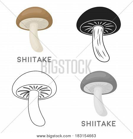 Shiitake icon in cartoon style isolated on white background. Mushroom symbol vector illustration.