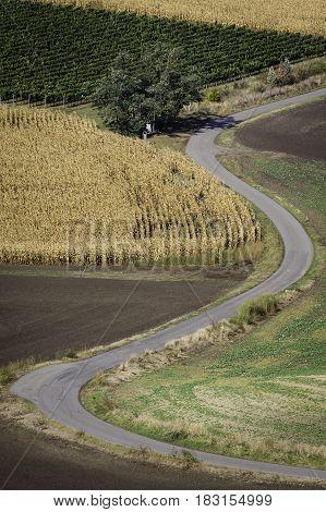 Winding empty road at Moravian Fields in Czechia.