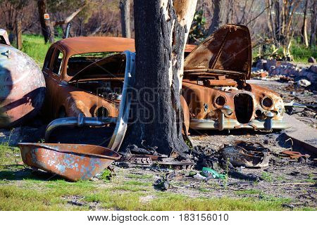 Charcoaled forgotten landscape including burnt old cars caused from a wildfire