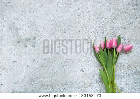 Spring pink tulips with over a shabby chique background