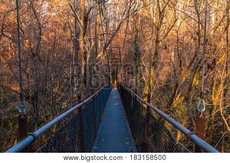 Steel span bridge in the Lullwater Park Atlanta USA