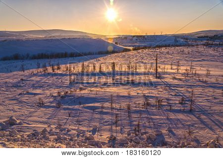 long shadows from trees on a sunset a landscape in the winter