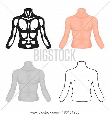 Chest icon in cartoon style isolated on white background. Part of body symbol vector illustration.
