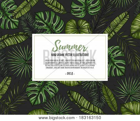 Summer Tropical Background. Frame With Palm Leaves (monstera, Areca Palm, Fan Palm, Banana Leaves).