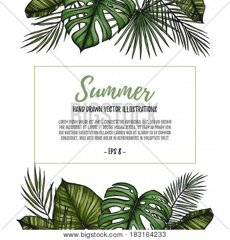 Summer Tropical Postcard Template. Frame With Palm Leaves (monstera, Areca Palm, Fan Palm, Banana Le