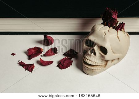 Vintage skull ashtray on a white background with red dried roses. Design. Book.
