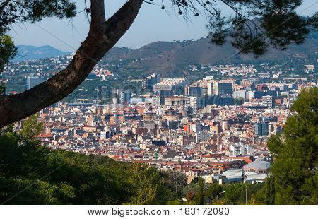 Barcelona cityscape view through trees of nearby park.  City's urban sprawling density of buildings, apartments, condos, churches and neighbourhoods nestled at the base of gently sloping hillsides.
