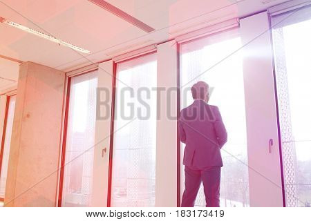 Rear view of mature businessman looking through office window