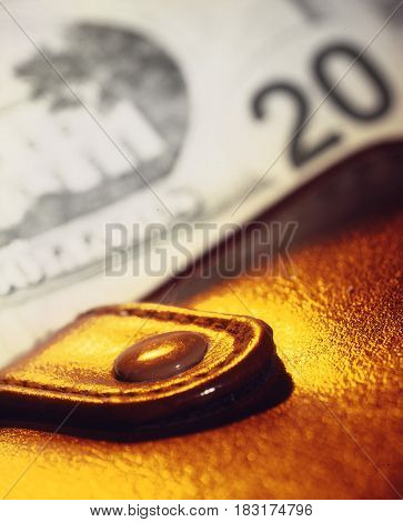 Purse on a background of a banknote of 20 dollars