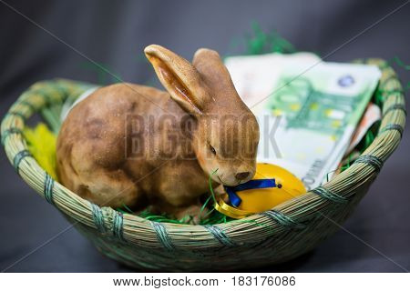 Easter bunny with money (€ euro) in the nest