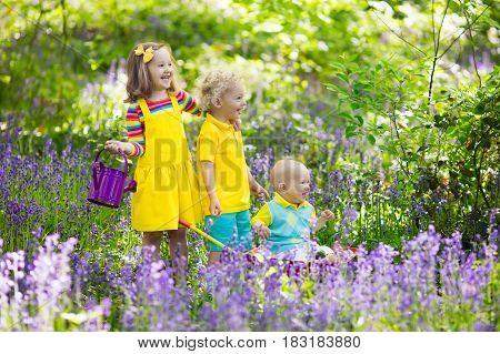 Kids In Bluebell Flower Forest In Summer