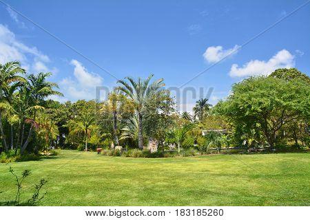 Botanical Garden In Miami