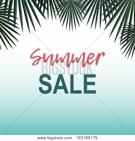 Summer sale background with palm Palm leafs on gradient white and blue background and the inscription Summer sale Vector background for banner, poster, flyer, card, postcard, cover, brochure