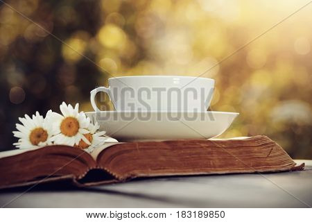 White porcelain cup bouquet of camomiles and old open book.