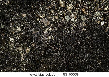 Soil, soil background, soil texture, spring soil. Earth, earth background, ground texture. Gray background. Grunge background.