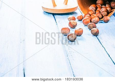 Hazelnuts in shell scattered on blue plank table
