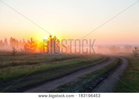 Morning, dawn, the sun rises above the ground, the morning mist spreads over the field