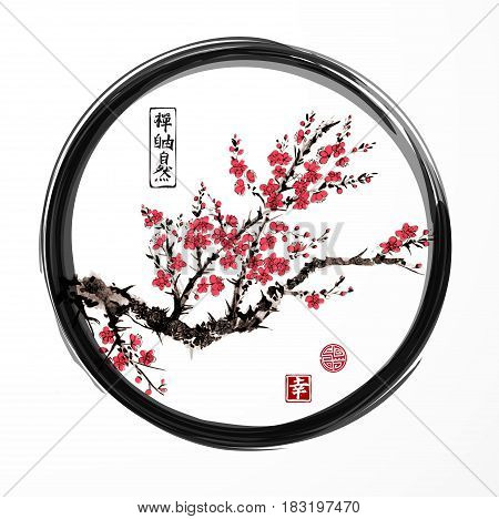 Oriental sakura cherry tree blossoming in black enso zen circle on white background. Contains hieroglyphs - zen, freedom, nature, happiness. Traditional oriental ink painting sumi-e, u-sin, go-hua.