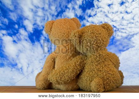 Back of a couple cute brown bears sitting on wood hugging each other with blurred blue sky with clouds background