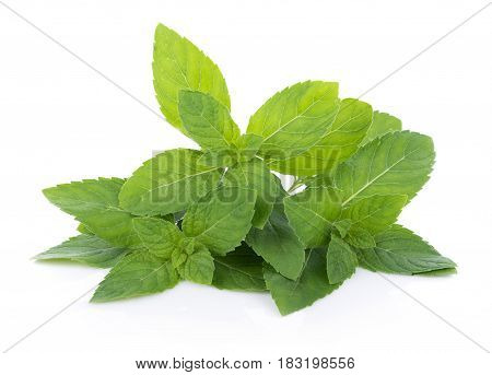 Closeup Peppermint isolated on white background. food