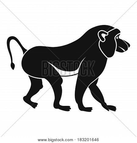 Japanese macaque icon. Simple illustration of japanese macaque vector icon for web