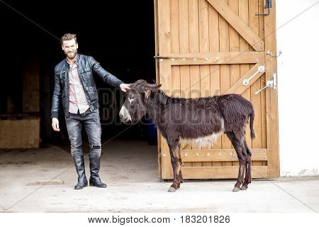 Handsome businessman with donkeys outdoors on the barn background