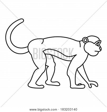 Mandrill monkey icon in outline style isolated on white background vector illustration
