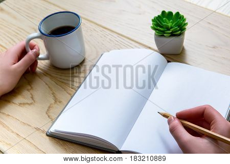 Close up of female hands writing at page. She is taking white mug. Green plant near diary