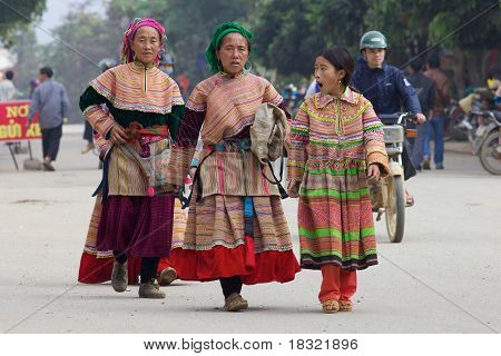 Flower Hmong People Vietnam