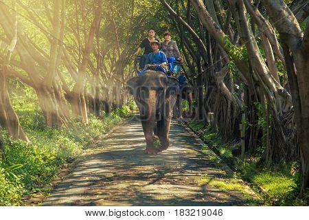 AYUTTHAYA, THAILAND - 2015 April 28 : Tourist on elephant sightseeing in Ayutthaya Historical Park, Ayutthaya, Thailand