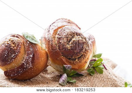 Sweet bun with nut filling in powdered sugar on a white background