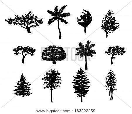 Big set of hand drawn forest trees silhouettes vector illustration in black isolated over white.